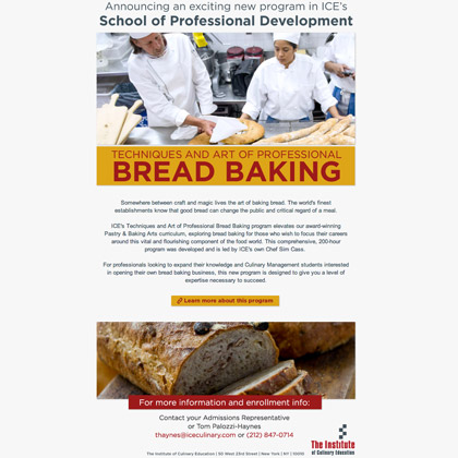 ICE - Professional Cake Decorating Email